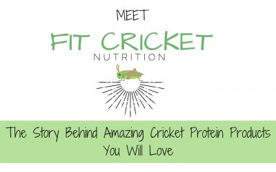 The story behind amazing cricket protein products you will love