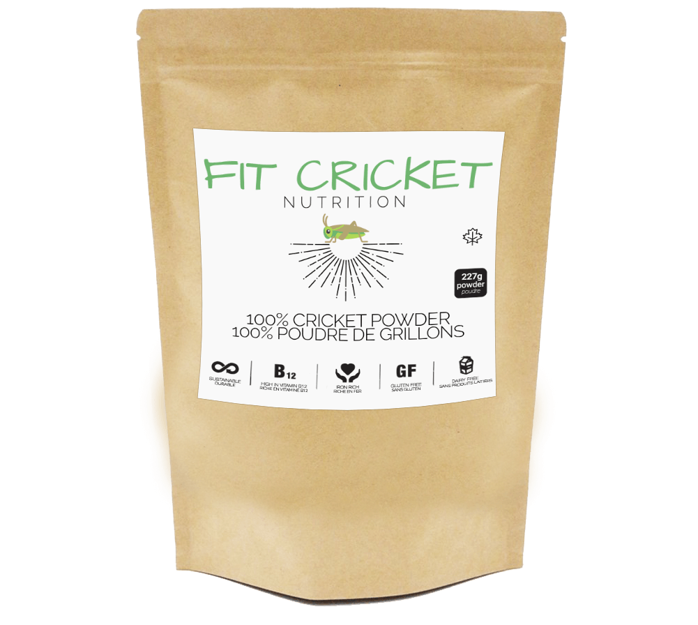 Fit Cricket Protein Powder