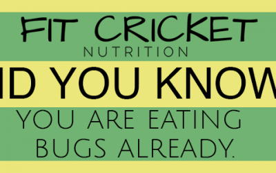 Consider Crickets, Since You're Eating Bugs Anyways!