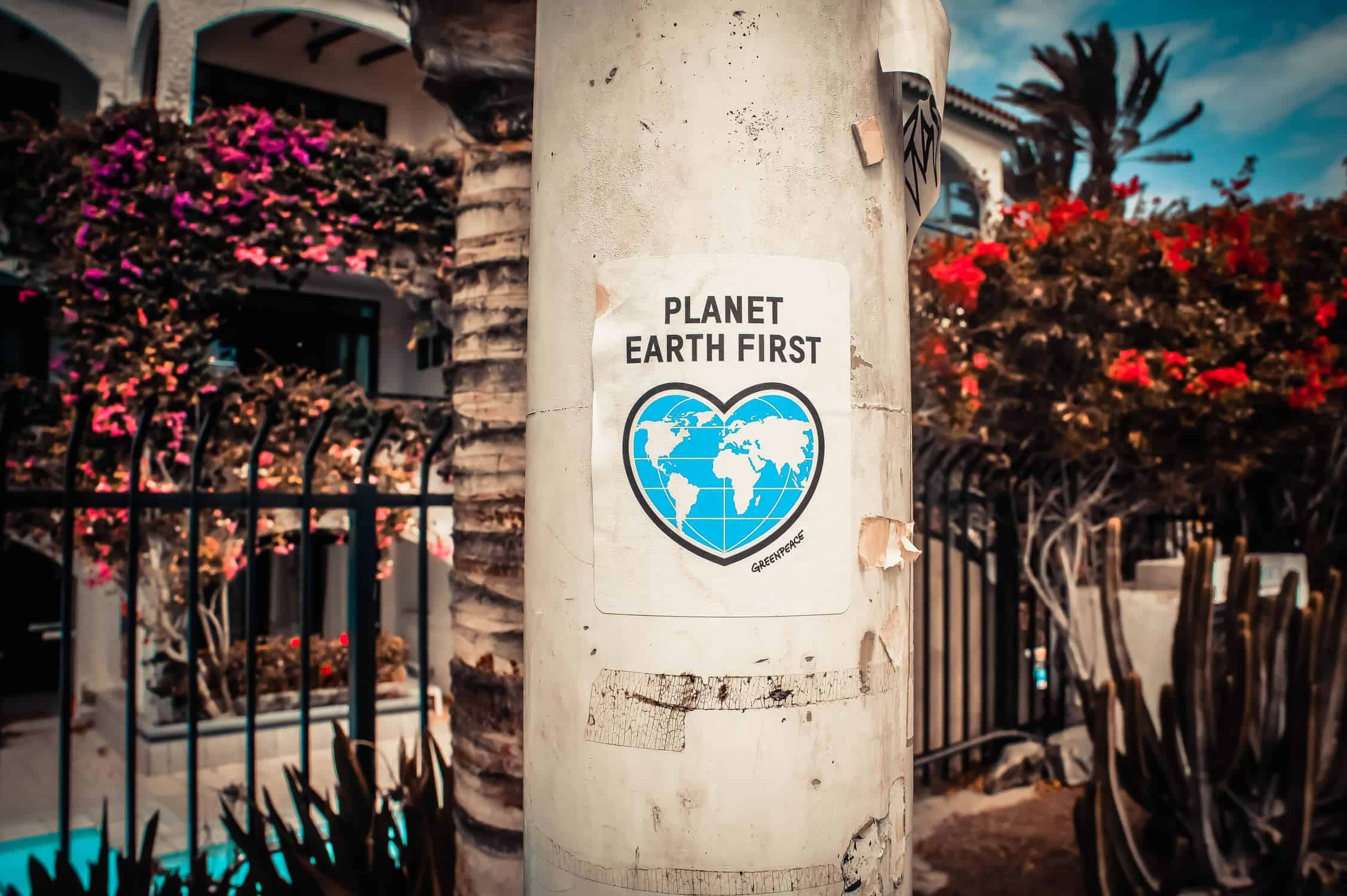 """Planet First"" sign on light pole. Done by eating bugs"