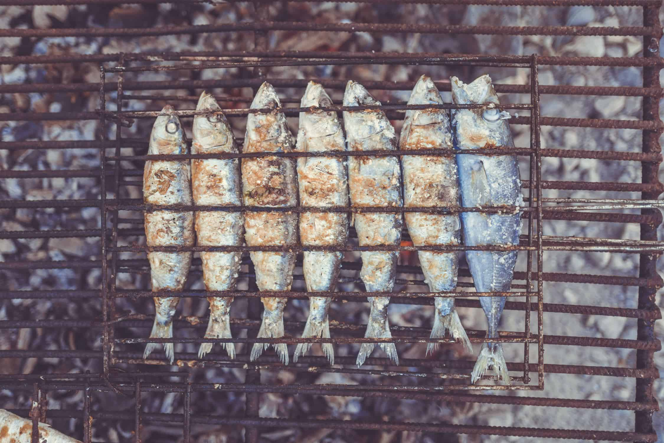A Barbeque Grill full of fish
